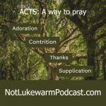 A way to pray, ACTS