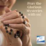 Please join us in praying the Glorious Mysteries. Please use this podcast as part of your personal prayer time.