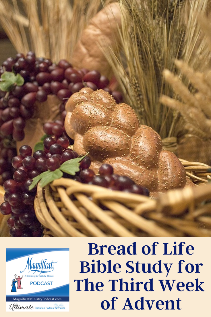 Join us weekly for a podcast focusing on the Sunday readings based on the Bread of Life Catholic Bible Study and presented by the coauthor, Marie Finn.