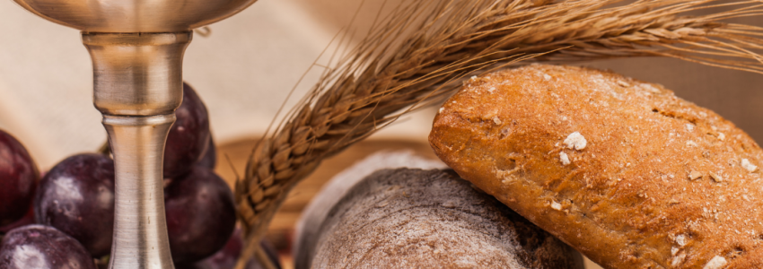 Today's podcast focuses on the Sunday readings for the 3rd Sunday of Ordinary Time. It is based on the Bread of Life Catholic Bible Study and presented by the coauthor, Marie Finn.