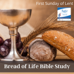Today's podcast focuses on the Sunday readings for the First Sunday of Lent. It is based on the Bread of Life Catholic Bible Study and presented by the coauthor, Marie Finn.