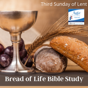 Today's podcast focuses on the Sunday readings for the Third Sunday of Lent. It is based on the Bread of Life Catholic Bible Study and presented by the coauthor, Marie Finn.