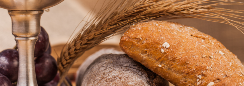 Today's podcast focuses on the Sunday readings for the Second Sunday of Lent. It is based on the Bread of Life Catholic Bible Studyand presented by the coauthor, Marie Finn.