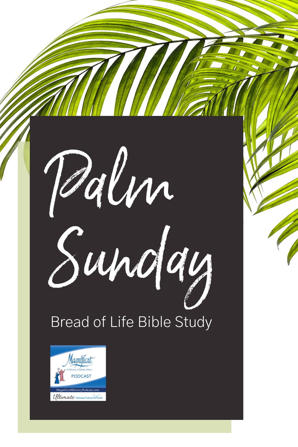 Palm Sunday: Bread of Life Bible Study
