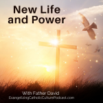 We all want a new life power of faith and grace that is given by God. But how do we go about doing this? In this episode, Father David goes deeper into the heart of the matter that there is power in prayer and the graces of God are just waiting for us!