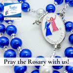 Please join the Central Service Team as we pray the Rosary with meditations.