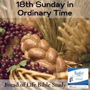 Eighteenth Sunday in Ordinary Time - August 1, 2021 - Bread of Life Bible Study There is a hunger in all of us for truth, life, and love.