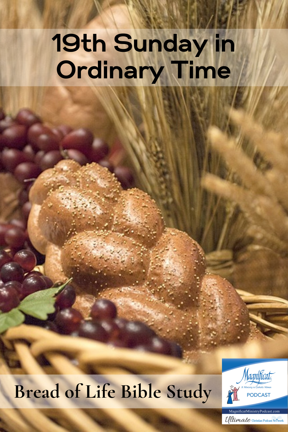 Nineteenth Sunday in Ordinary Time. We need to know and believe that to eat His living bread means to unite ourselves to Jesus.